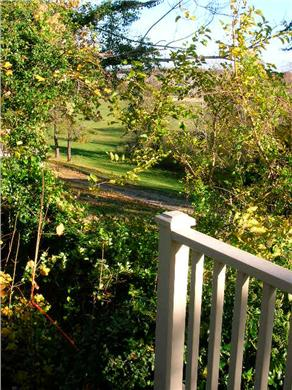 vineyard haven Martha's Vineyard vacation rental - View to park