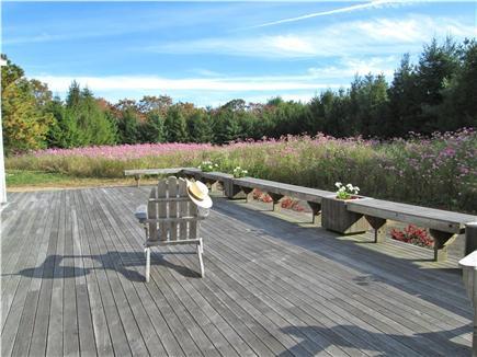 West Tisbury Martha's Vineyard vacation rental - Plenty of deck, plenty of sun, always a gentle breeze.
