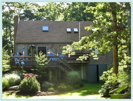 West Tisbury, Lambert's Cove  Martha's Vineyard vacation rental - Studio House: sunlit treasure in a forest clearing