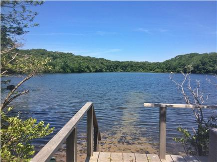West Tisbury, Lambert's Cove area off State  Martha's Vineyard vacation rental - The best freshwater swimming on the island