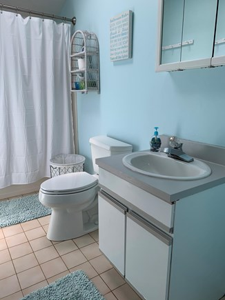Katama - Edgartown, Edgartown (Katama) Martha's Vineyard vacation rental - Upstairs bathroom with skylight
