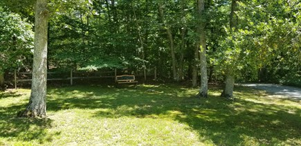 West Tisbury Martha's Vineyard vacation rental - Large quiet and peaceful front yard