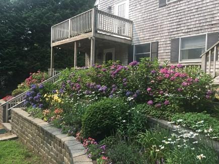 Vineyard Haven, West Chop Martha's Vineyard vacation rental - Beautiful landscaping