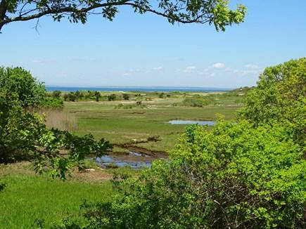 Chilmark Martha's Vineyard vacation rental - View of Vineyard Sound