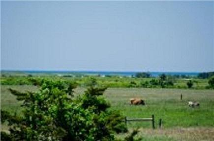 Katama - Edgartown, Edgartown Martha's Vineyard vacation rental - Ocean Views