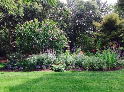 Chilmark Martha's Vineyard vacation rental - Gardens bloom throughout the summer