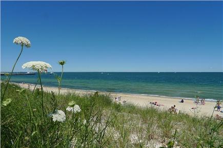 Oak Bluffs Martha's Vineyard vacation rental - Walk to Oak Bluffs Town Beach