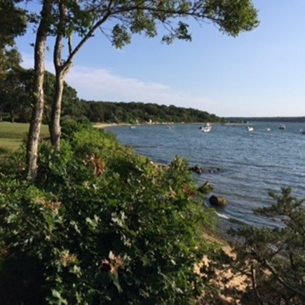 Oak Bluffs Martha's Vineyard vacation rental - Steps from the lagoon