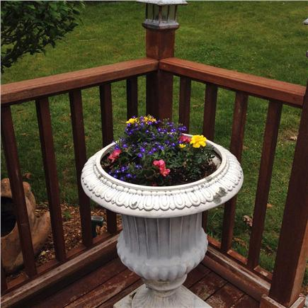 Vineyard Haven Martha's Vineyard vacation rental - Mahogany deck & gazebo to relax in the AM or PM