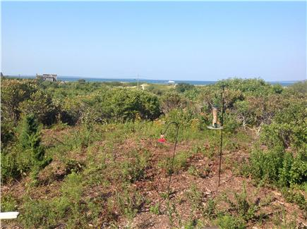 Aquinnah Martha's Vineyard vacation rental - Bird feeder near 1st floor deck - view of Vineyard Sound to north