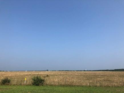 Katama - Edgartown Martha's Vineyard vacation rental - Katama Farm is across the road