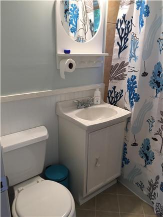 Oak Bluffs Martha's Vineyard vacation rental - Bathroom