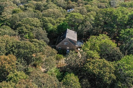 Edgartown Martha's Vineyard vacation rental - From up in the sky