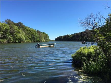 West Tisbury Martha's Vineyard vacation rental - Walk 5 minutes to beautiful Deep Bottom Cove