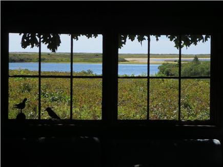 West Tisbury Martha's Vineyard vacation rental - Living room window looking south