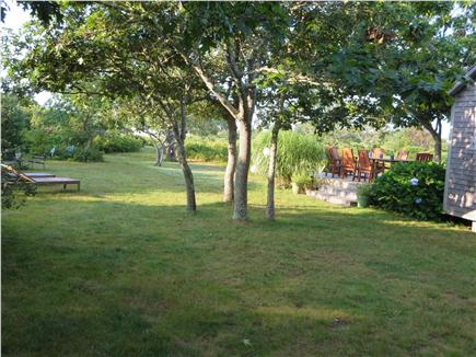 West Tisbury Martha's Vineyard vacation rental - Back yard