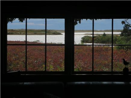 West Tisbury Martha's Vineyard vacation rental - View out living room windows