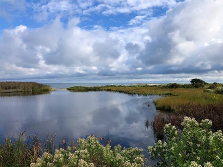 Edgartown Martha's Vineyard vacation rental - The Ice Pond at Sheriff's Meadow