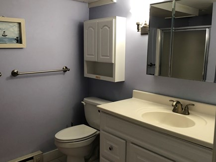 Edgartown   near town Martha's Vineyard vacation rental - Bathroom with shower- lower level