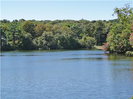 Lambert's Cove  West Tisbury Martha's Vineyard vacation rental - Seth's Pond is great for swimming and kayaking