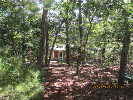 Oak Bluffs, East Chop Martha's Vineyard vacation rental - Storybook walk through the woods.