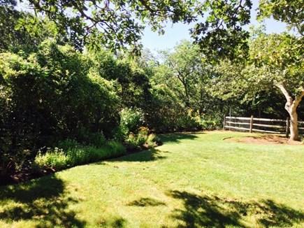 West Tisbury Martha's Vineyard vacation rental - Large completely enclosed grassy yard