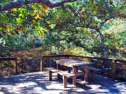 West Tisbury Martha's Vineyard vacation rental - Along one of the trails is a platform deck with picnic table