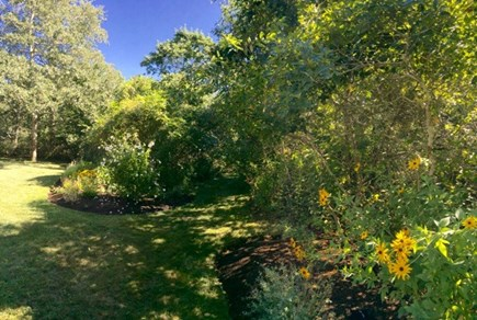 West Tisbury Martha's Vineyard vacation rental - Trails run throughout the property