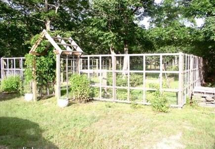 Oak Bluffs Martha's Vineyard vacation rental - Flower Garden