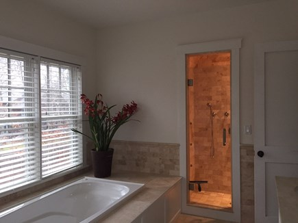 Oak Bluffs Martha's Vineyard vacation rental - En suite bath