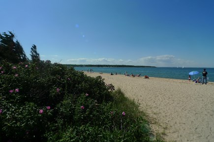 Vineyard Haven Martha's Vineyard vacation rental - Early sun bathers at Eastville Beach