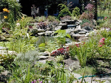 Oak Bluffs Martha's Vineyard vacation rental - Viewing Koi pond from patio with comfortable seating