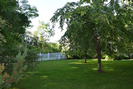 West Tisbury, Makonikey Martha's Vineyard vacation rental - Front yard