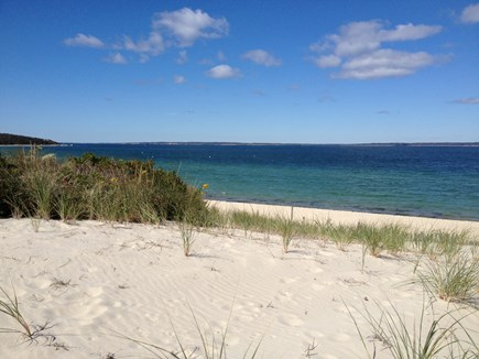 West Tisbury Martha's Vineyard vacation rental - Beautiful Lambert's Cove Beach is just over a 1/2 mile away