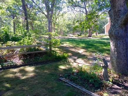 Edgartown Martha's Vineyard vacation rental - View of the yard