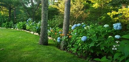Edgartown Martha's Vineyard vacation rental - Yard in Full Bloom
