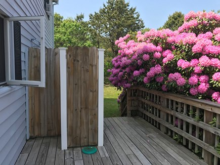 Katama - Edgartown, Edgartown Martha's Vineyard vacation rental - Outdoor shower on deck