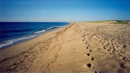 Edgartown-Chappaquiddick Martha's Vineyard vacation rental - Wasque beach & beautiful open ocean 500 ft away.  Private.