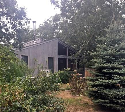 Edgartown, Nr  Oak Bluffs line Martha's Vineyard vacation rental - Natural private setting.