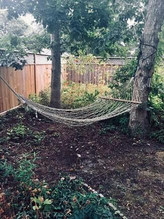Edgartown, Nr  Oak Bluffs line Martha's Vineyard vacation rental - Pond-side hammock for lazy days!