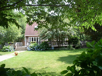 West Tisbury Martha's Vineyard vacation rental - Looking over the hydrangea hedge and across the large front yard.