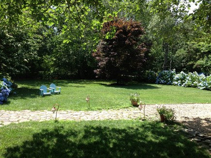 West Tisbury Martha's Vineyard vacation rental - Across the front yard - perfect for a game of catch or tag!