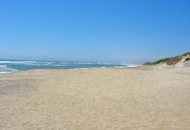 Edgartown Martha's Vineyard vacation rental - Beautiful South Beach is just a mile & 1/2 away!