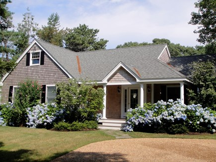 Edgartown Martha's Vineyard vacation rental - Beautiful hydrangea in summer bloom