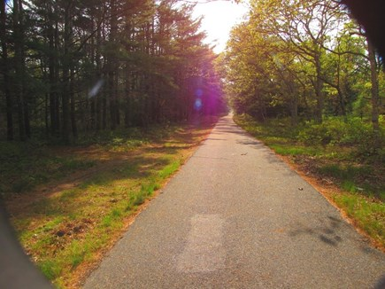 West Tisbury Martha's Vineyard vacation rental - Jog, walk, roller blade & bike on forest bike path next door!