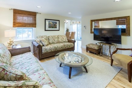 Vineyard Haven, Martha's Vineyard Martha's Vineyard vacation rental - Livining Room with TV