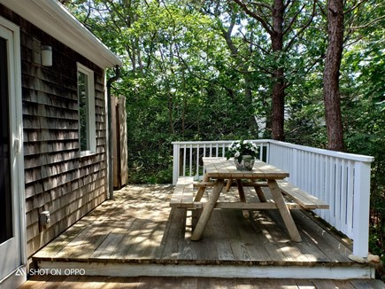 Edgartown , Katama, off Meetin Martha's Vineyard vacation rental - Wrap around deck with picnic table