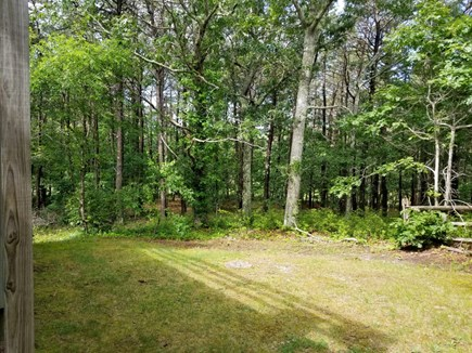 Vineyard Haven Martha's Vineyard vacation rental - Small lawn beside guesthouse.
