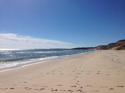Edgartown Martha's Vineyard vacation rental - Beautiful Lucy Vincent Beach
