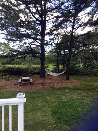 Edgartown Martha's Vineyard vacation rental - View of State Forrest from rear deck